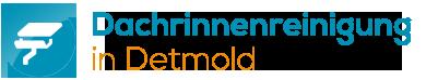 Dachrinnenreinigung Detmold | Gelford GmbH